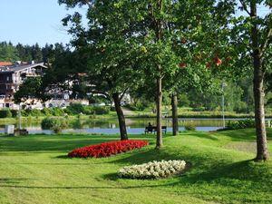 22069923-Ferienwohnung-2-Goslar-Hahnenklee-300x225-23