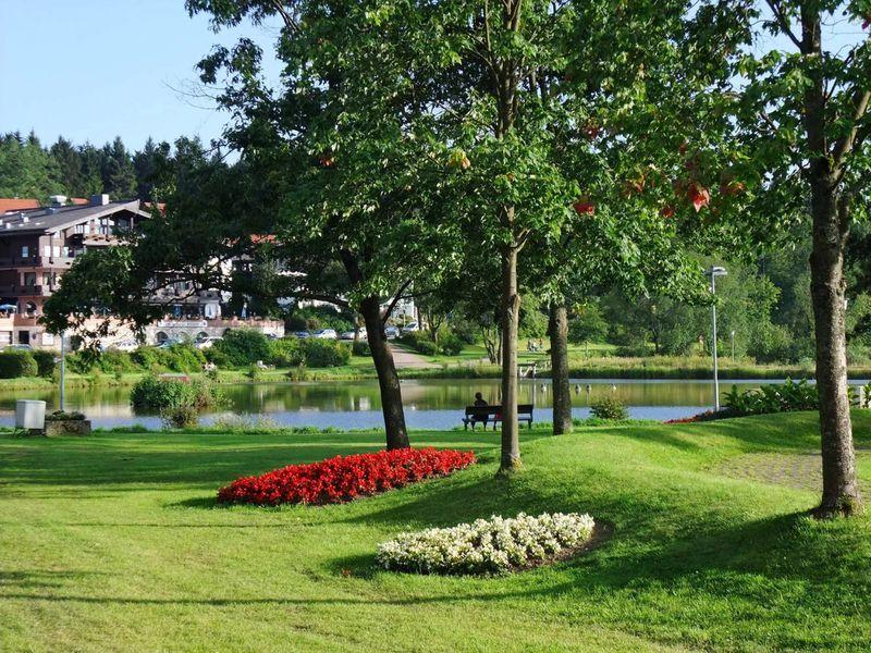 22069927-Ferienwohnung-2-Goslar-Hahnenklee-800x600-20