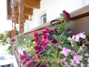 Ferienwohnung für 4 Personen (100 m²) ab 140 € in Gstadt am Chiemsee