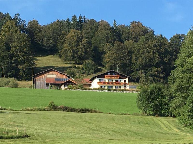 17932695-Ferienwohnung-4-Halblech-800x600-0