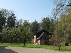 21983649-Ferienwohnung-6-Hermannsburg-300x225-1