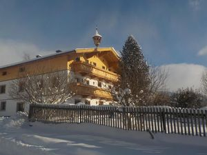 Ferienwohnung für 4 Personen (24 m²) ab 80 € in Hollersbach im Pinzgau