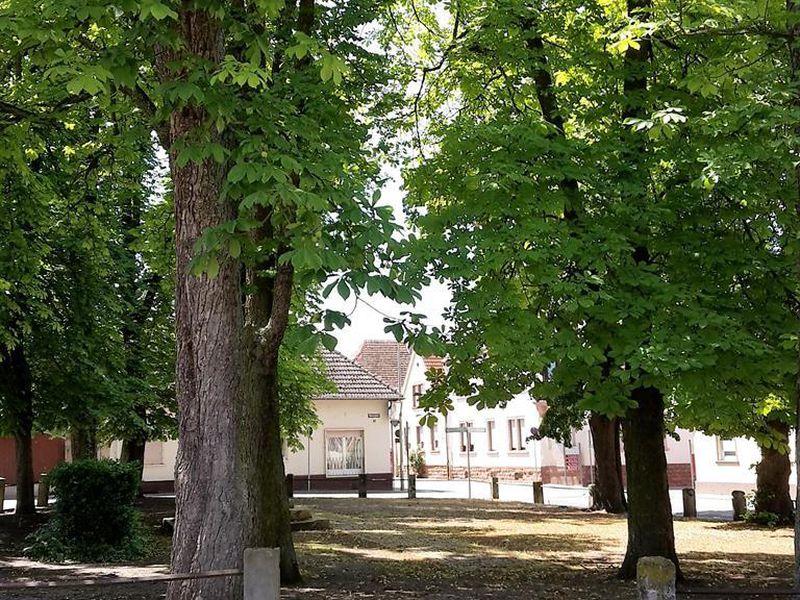 18190529-Ferienwohnung-4-Knittelsheim-800x600-2