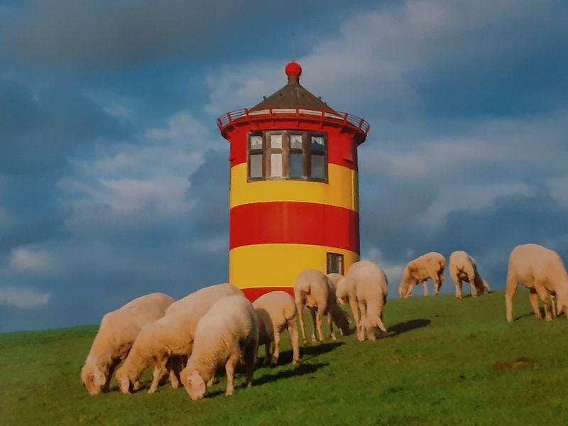 21183571-Ferienwohnung-4-Krummhörn Pewsum-800x600-21