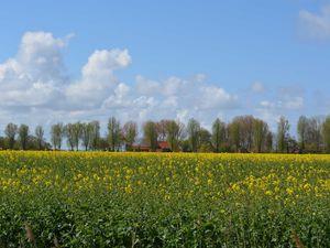 Ferienwohnung für 2 Personen (60 m²) ab 45 € in Krummhörn Uttum