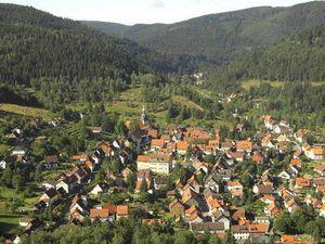 22135033-Ferienwohnung-2-Langelsheim-300x225-12