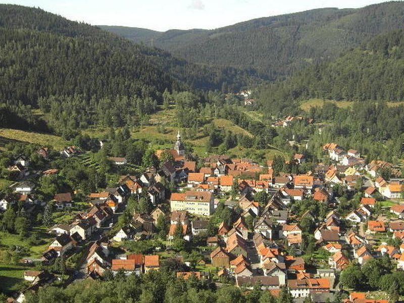 22135033-Ferienwohnung-2-Langelsheim-800x600-12