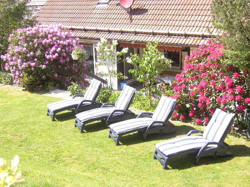 22135033-Ferienwohnung-2-Langelsheim-800x600-10