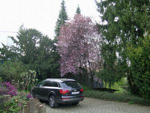 18026384-Ferienwohnung-2-Manderscheid-300x225-4