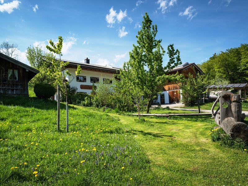92718-Ferienwohnung-2-Marktschellenberg-800x600-0