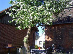 Ferienwohnung für 2 Personen (52 m²) ab 55 € in Meldorf