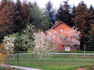 Ferienwohnung für 7 Personen (90 m²) ab 65 € in Neunburg vorm Wald