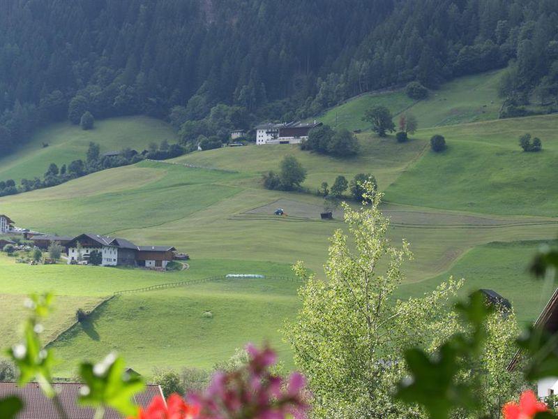 14263751-Ferienwohnung-5-Neustift im Stubaital-800x600-17