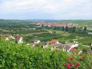 Ferienwohnung für 3 Personen (35 m²) ab 45 € in Nordheim am Main