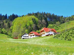 Ferienwohnung für 3 Personen (50 m²) ab 60 € in Oberharmersbach