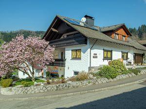 Ferienwohnung für 4 Personen (100 m²) ab 60 € in Oberharmersbach