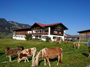 Ferienwohnung für 5 Personen (80 m²) ab 70 € in Obermaiselstein
