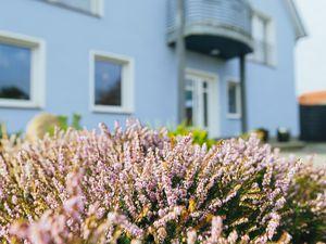 Ferienwohnung für 4 Personen (70 m²) ab 60 € in Ostseebad Kühlungsborn