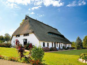 Ferienwohnung für 4 Personen (50 m²) ab 37 € in Pepelow