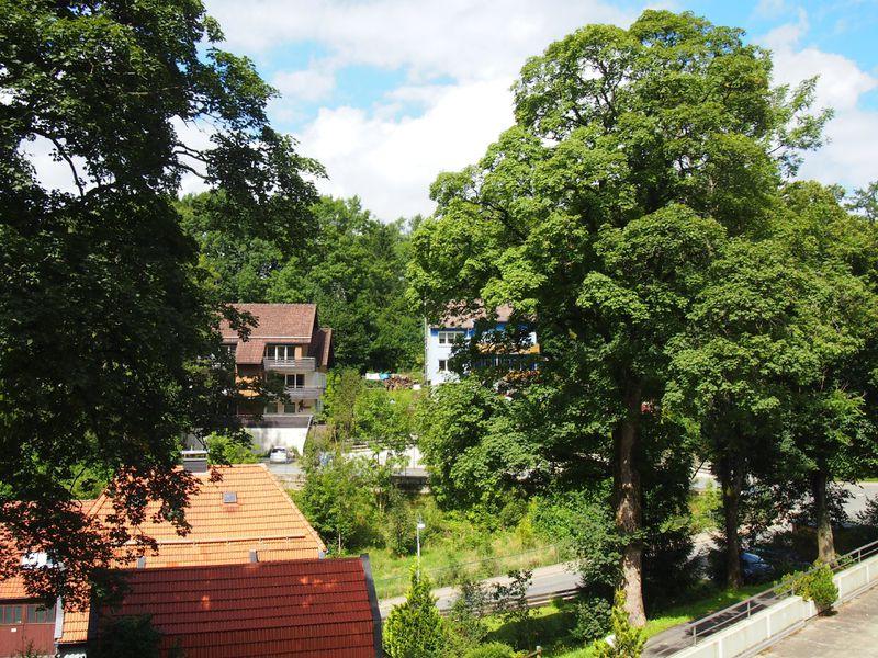 19406344-Ferienwohnung-3-Sankt Andreasberg-800x600-4