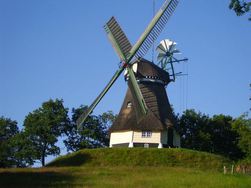 18925244-Ferienwohnung-2-Sankt Michaelisdonn-800x600-3