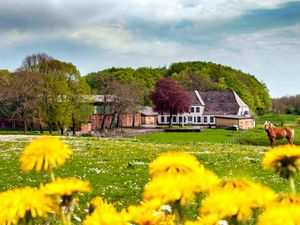 Ferienwohnung für 6 Personen (110 m²) ab 60 € in Scheggerott