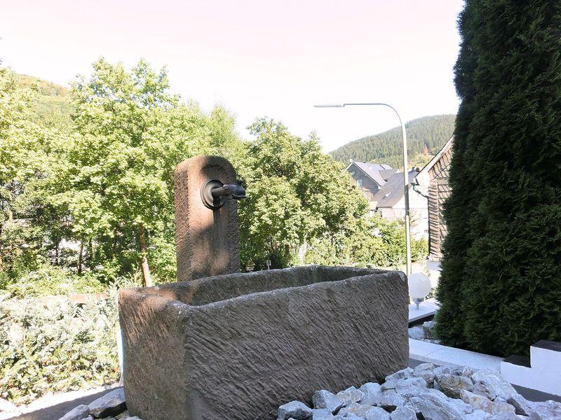 19341308-Ferienwohnung-4-Schmallenberg-800x600-13