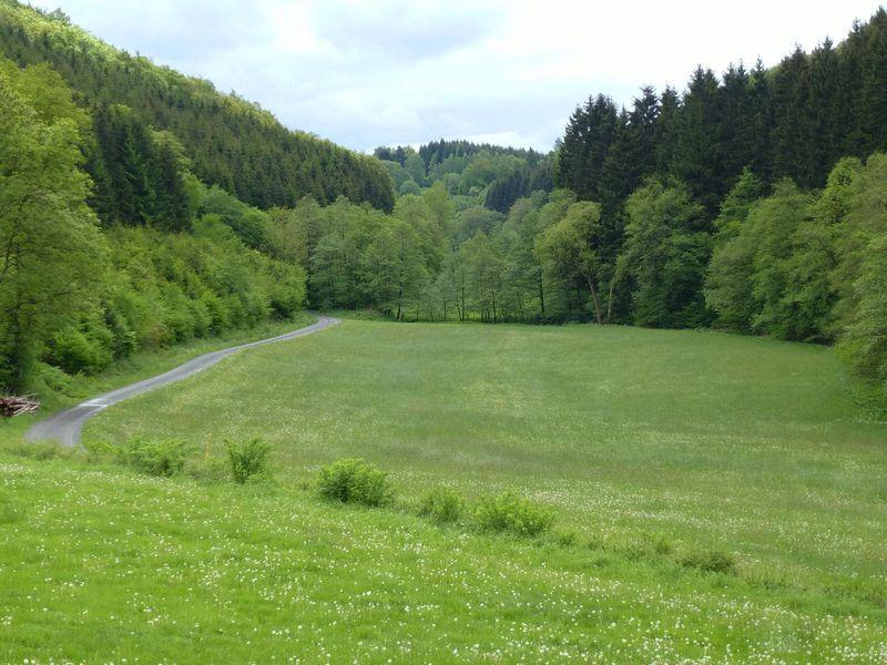19341308-Ferienwohnung-4-Schmallenberg-800x600-20