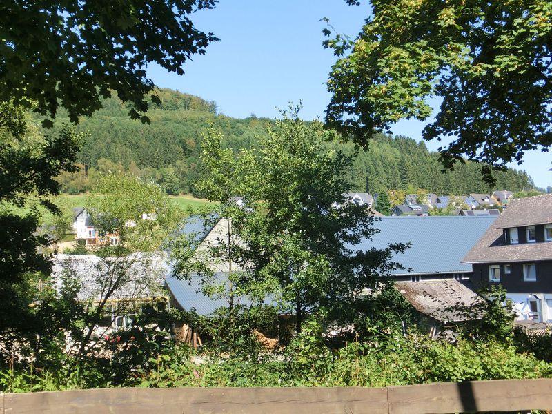 19341312-Ferienwohnung-8-Schmallenberg-800x600-22