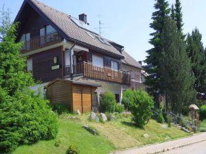 Ferienwohnung für 2 Personen (56 m²) ab 40 € in Schönwald im Schwarzwald