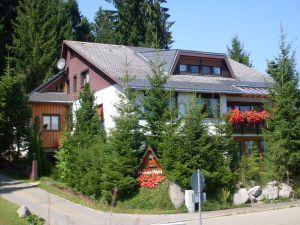 Ferienwohnung für 3 Personen (36 m²) ab 35 € in Schönwald im Schwarzwald