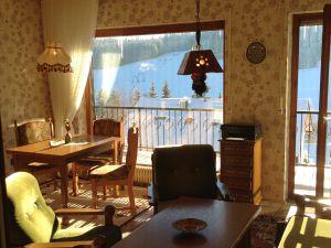 Ferienwohnung für 2 Personen (50 m²) ab 59 € in Schönwald im Schwarzwald