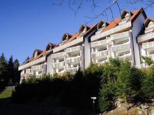 Ferienwohnung für 3 Personen (45 m²) ab 51 € in Schonach im Schwarzwald