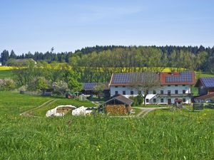 Ferienwohnung für 5 Personen (50 m²) ab 76 € in Seeon-Seebruck