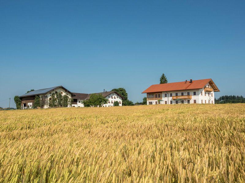 19220264-Ferienwohnung-4-Seeon-Seebruck-800x600-2