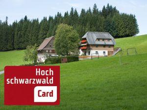 Ferienwohnung für 5 Personen (72 m²) ab 72 € in Titisee-Neustadt