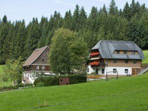 18980873-Ferienwohnung-2-Titisee-Neustadt-300x225-2
