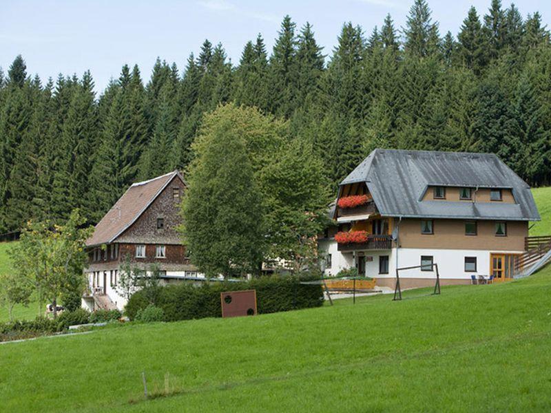 18980873-Ferienwohnung-2-Titisee-Neustadt-800x600-2