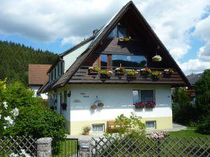 19054529-Ferienwohnung-4-Titisee-Neustadt-300x225-1