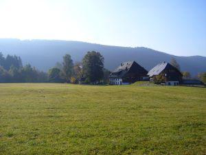 19041898-Ferienwohnung-3-Titisee-Neustadt-300x225-3