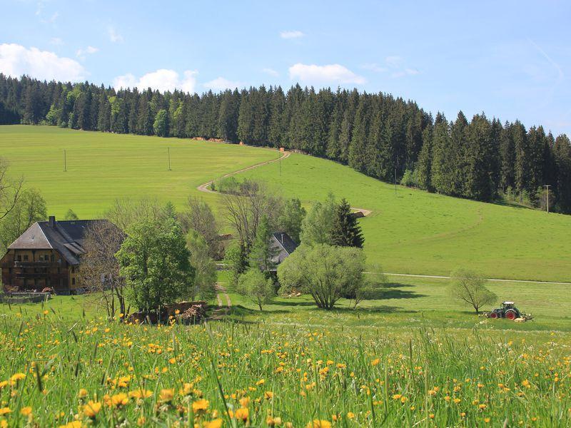 19052105-Ferienwohnung-6-Titisee-Neustadt-800x600-1