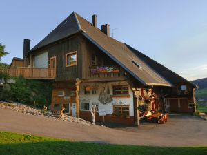 18984021-Ferienwohnung-4-Titisee-Neustadt-300x225-1