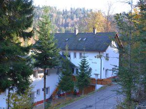 Ferienwohnung für 1 Person (19 m²) ab 27 € in Todtmoos