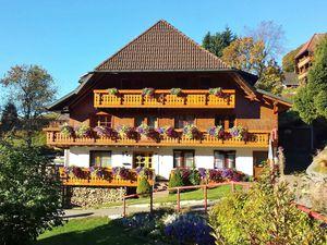 Ferienwohnung für 6 Personen (58 m²) ab 60 € in Todtnau