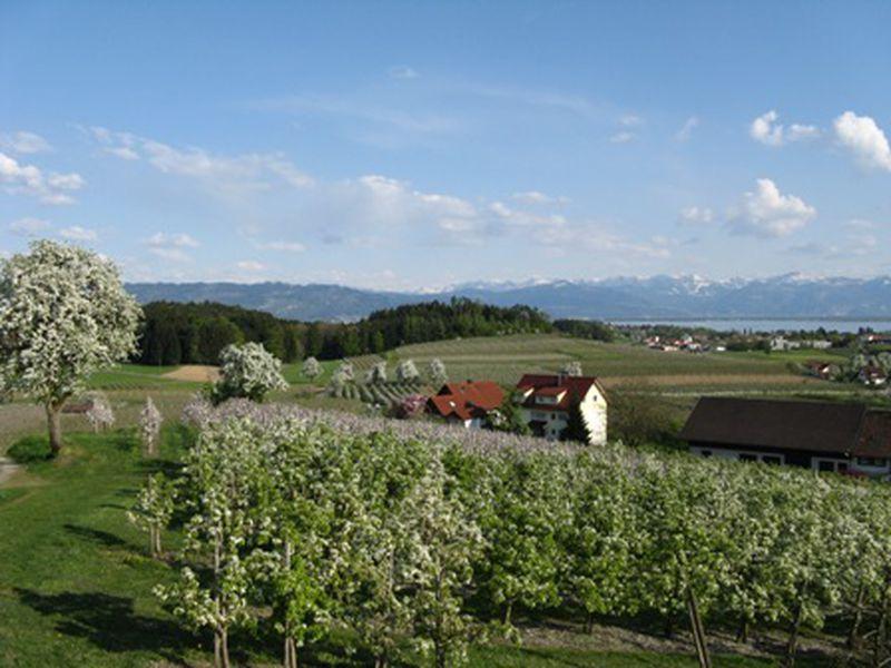 18596925-Ferienwohnung-4-Wasserburg am Bodensee-800x600-1