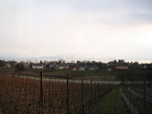 18629513-Ferienwohnung-6-Wasserburg am Bodensee-300x225-19