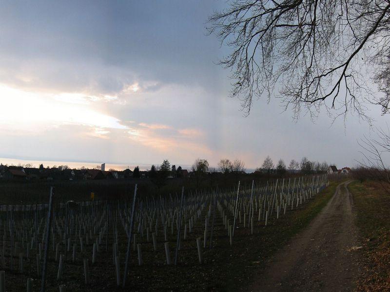 18629513-Ferienwohnung-6-Wasserburg am Bodensee-800x600-24
