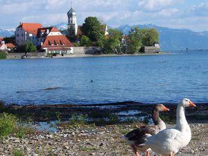 18668819-Ferienwohnung-7-Wasserburg am Bodensee-300x225-4