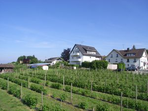 18711699-Ferienwohnung-4-Wasserburg am Bodensee-300x225-5