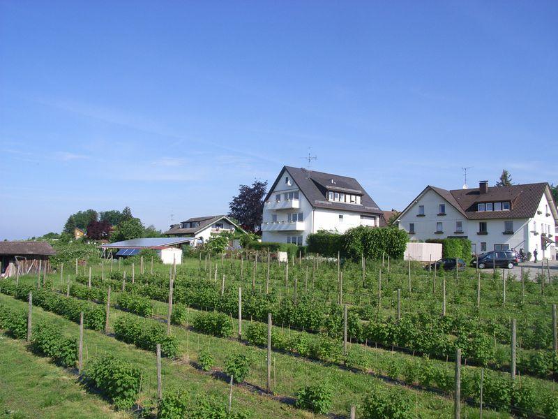 18711698-Ferienwohnung-4-Wasserburg am Bodensee-800x600-5